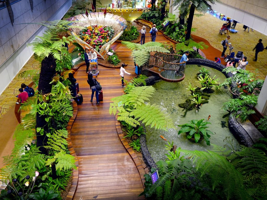 Singapore Changi Airport Garden
